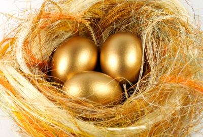 Are You Looking For The Golden Egg or The Goose That Laid It?